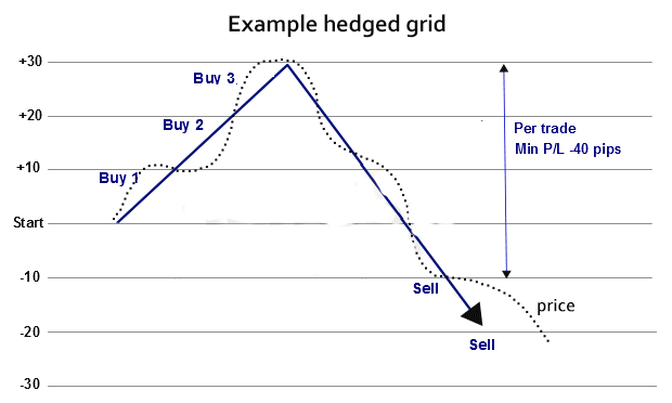Top5: Forex hedged grid trading system | Customer Evaluation